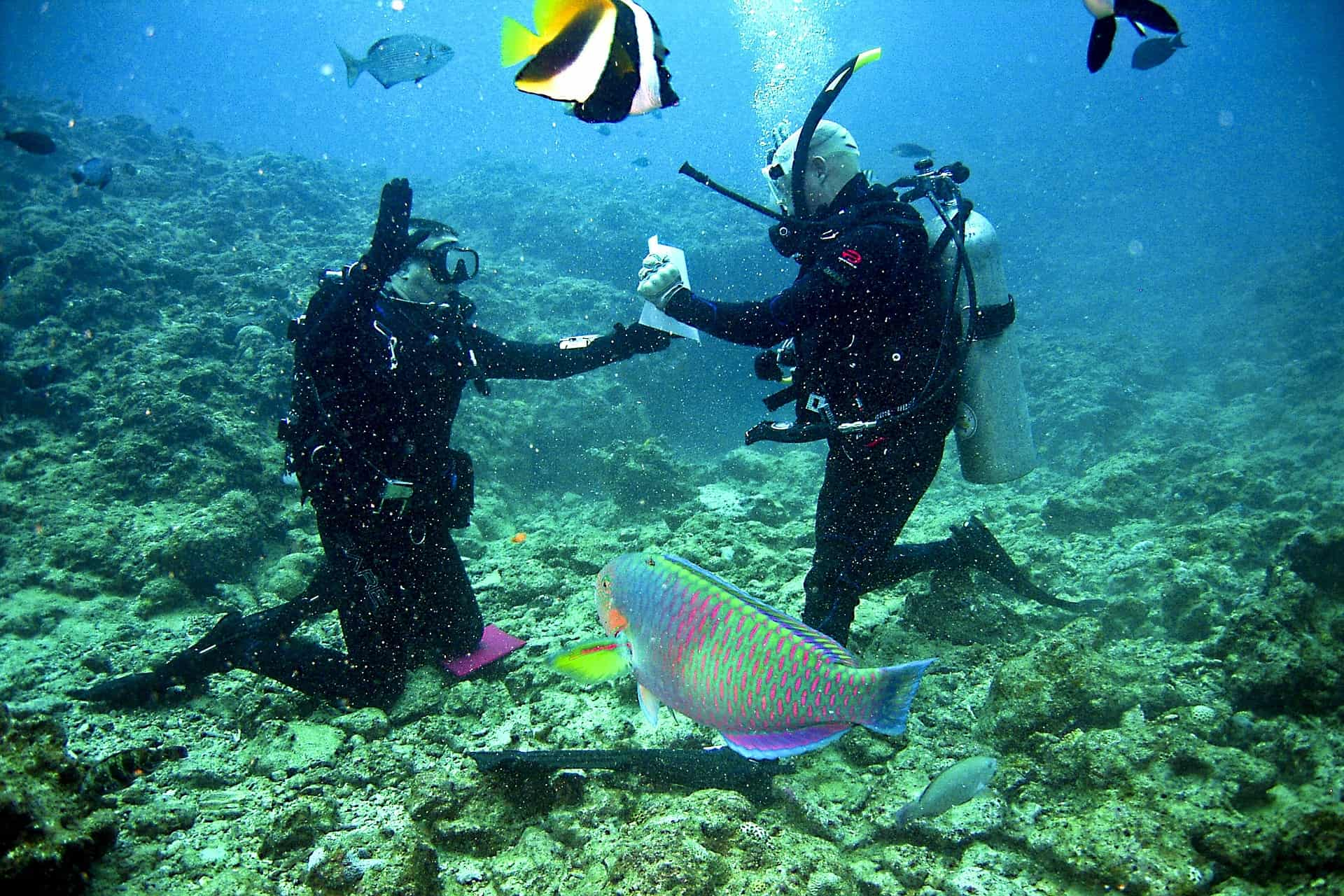 Exercise for Scuba Divers