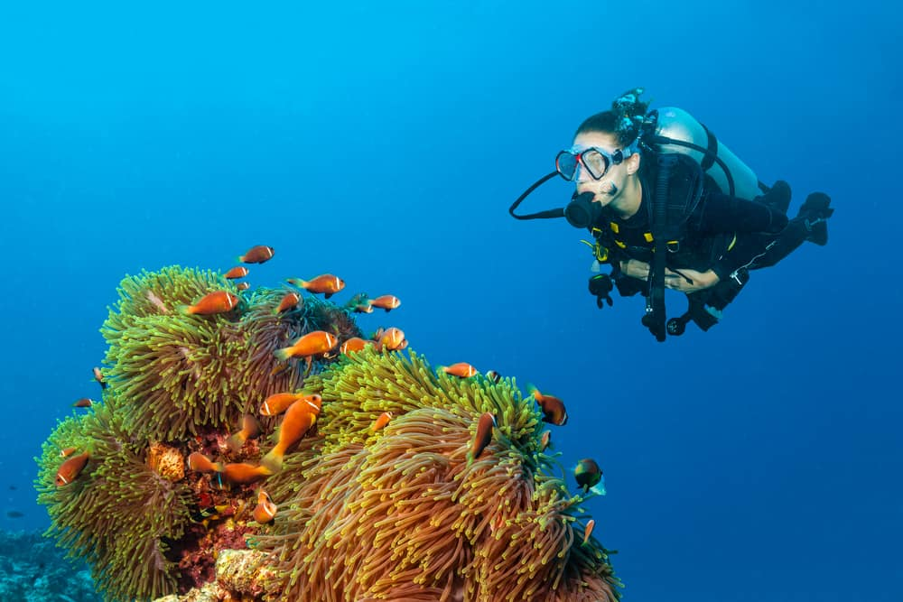 Diving and avoiding decompression - Use less energy when under the sea and reduce carbon dioxide build up.