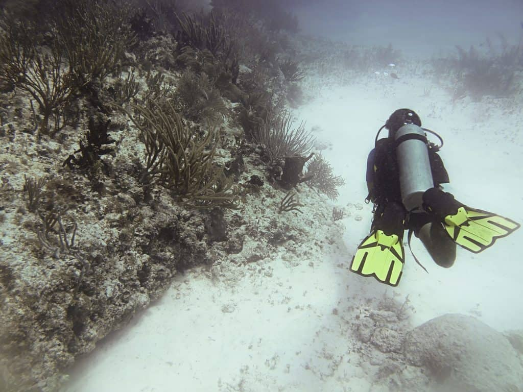 Diving with a Zeagle Ranger
