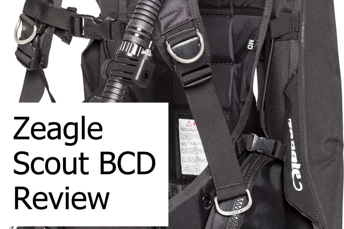 Review of the Zeagle Scout BCD