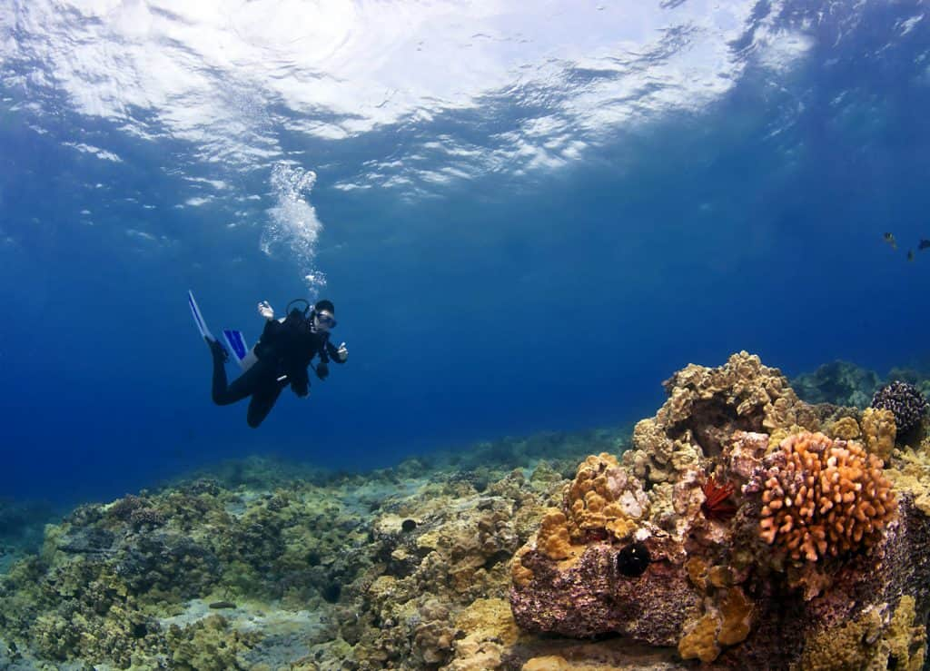 Diving on your back - a skill a scuba diver needs to master