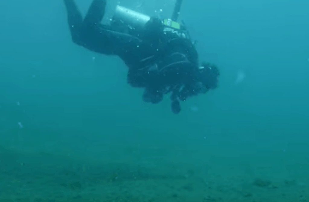 Muck Diving