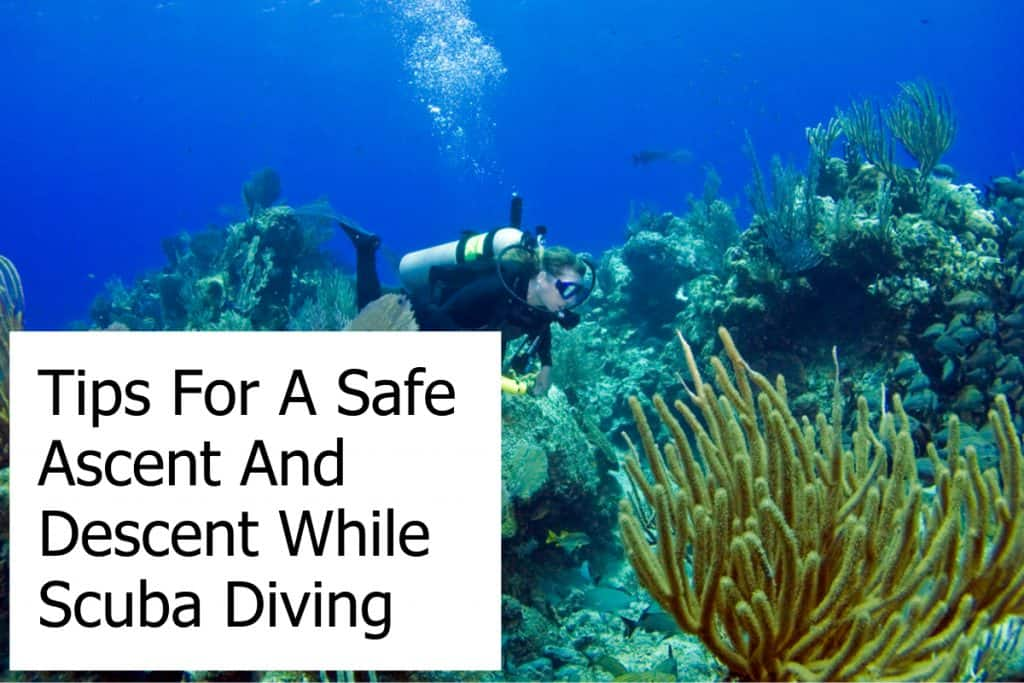 Tips For A Safe Ascent And Descent While Scuba Diving