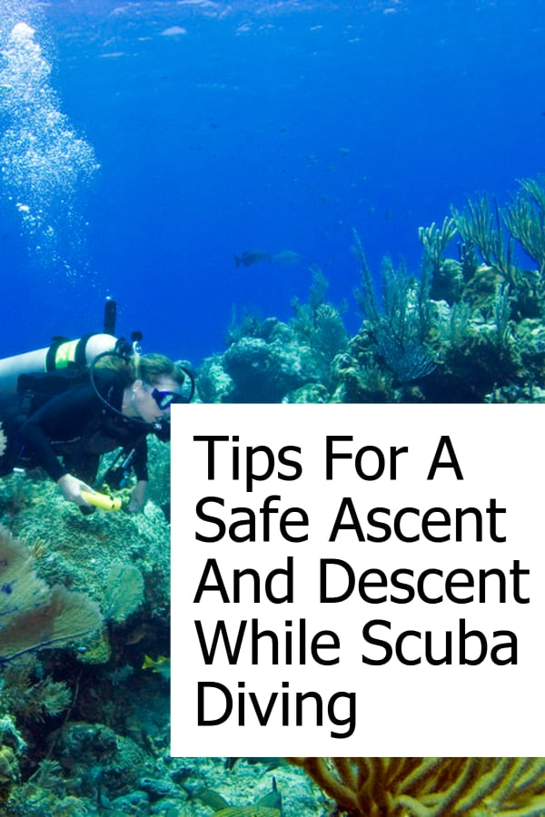 What you need to know to safely descend and ascend when scuba diving