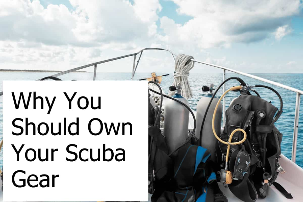 Are there any reasons why a scuba diver should own their gear instead of renting it?