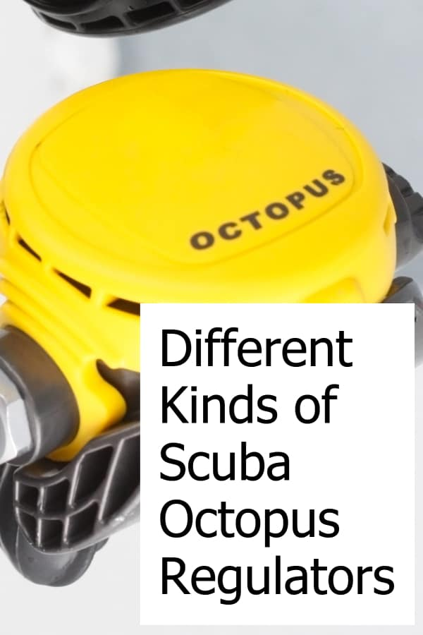 Octopus regulators are an important part of your dive gear. Learn what different types are available!