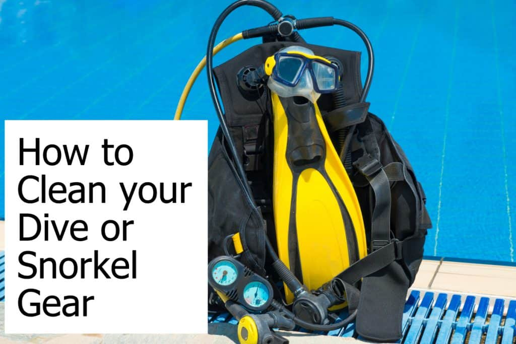 Steps to take to get your snorkel and dive equipment clean