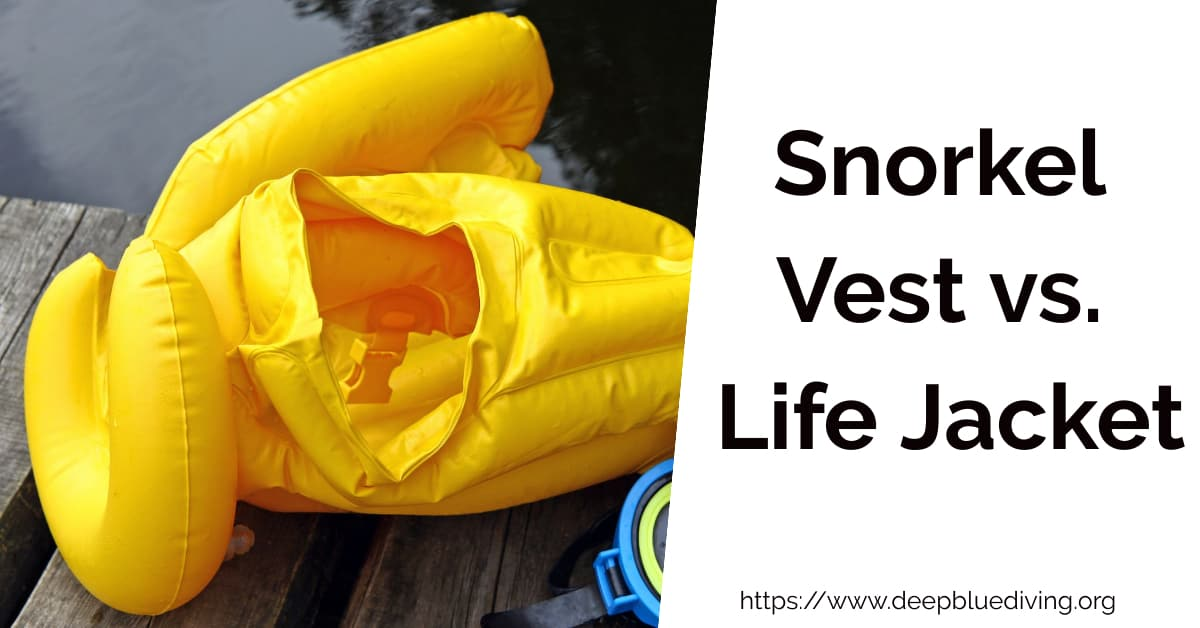 Comparing whether a snorkel vest or life jacket are the better options when you go snorkeling