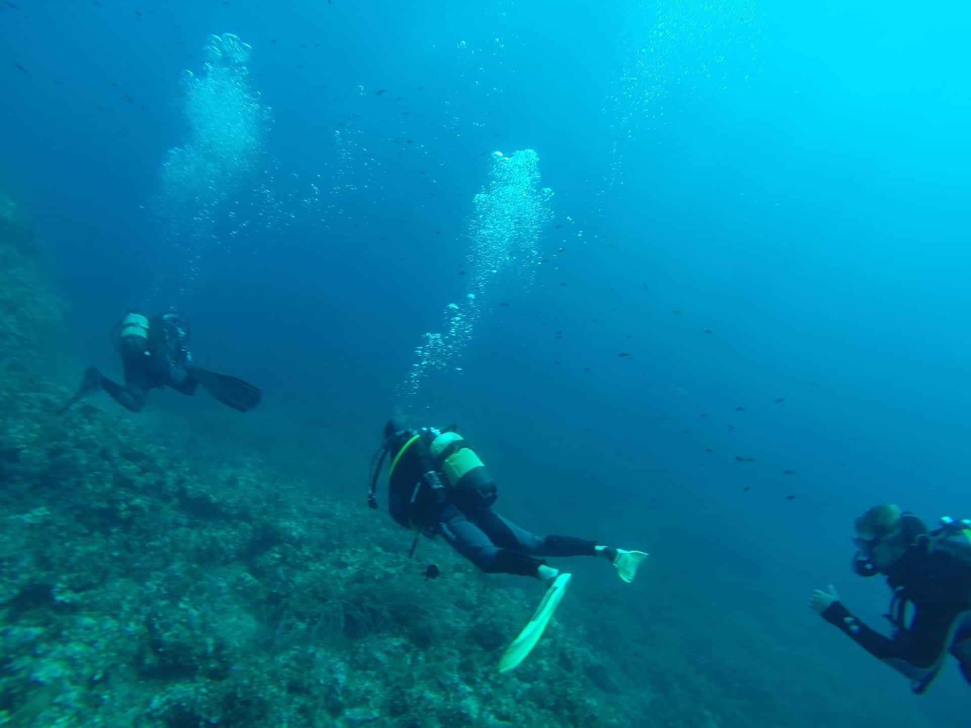 Drift Diving