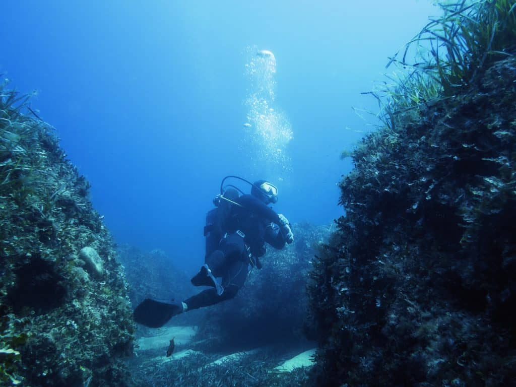 Suffering from Vertigo and Vomitting while diving