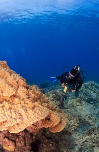 What is decompression diving?