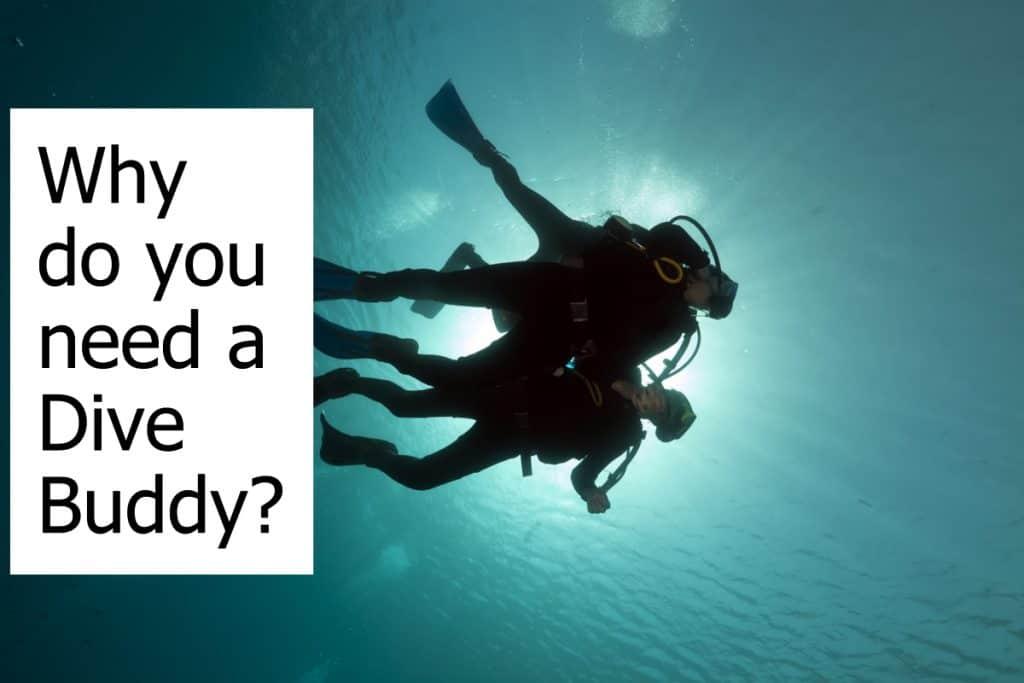 Is it safer to dive with a buddy? Do you need a Dive Buddy all the times?