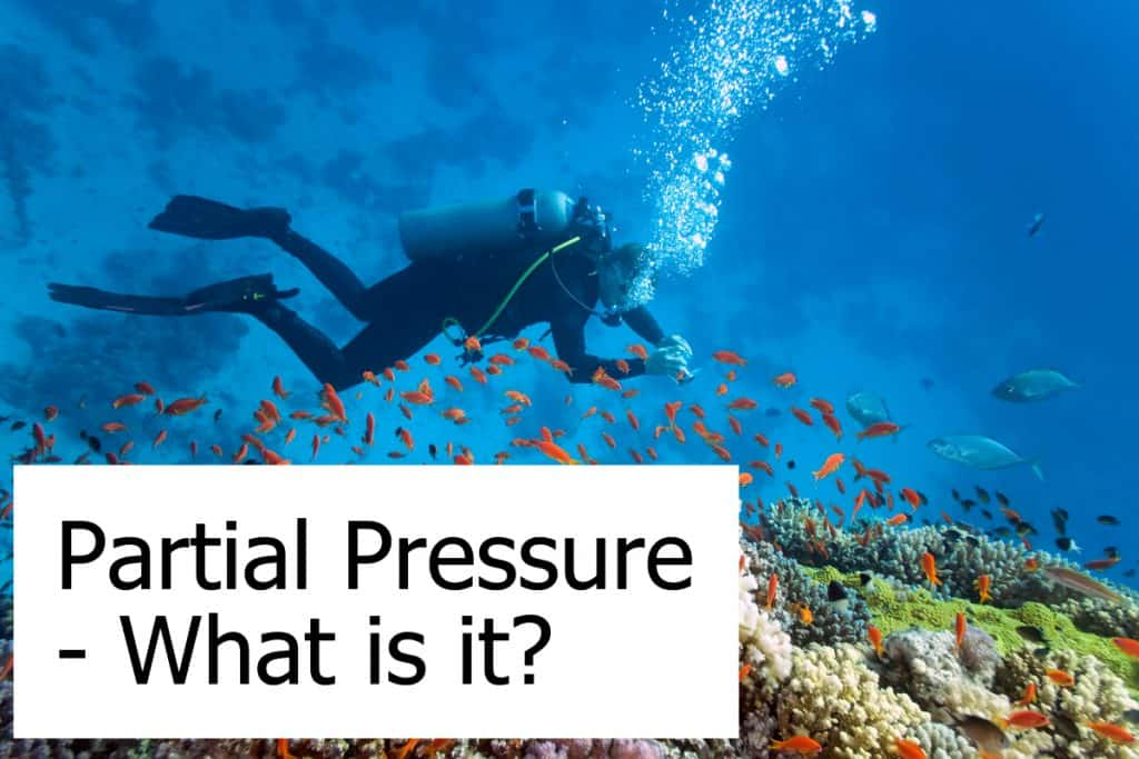 What is Partial Pressure? Do you need to know about it when scuba diving?