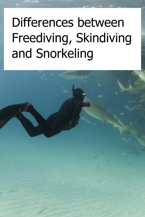 Freediving vs Skin Diving vs Snorkeling - What are the differences?