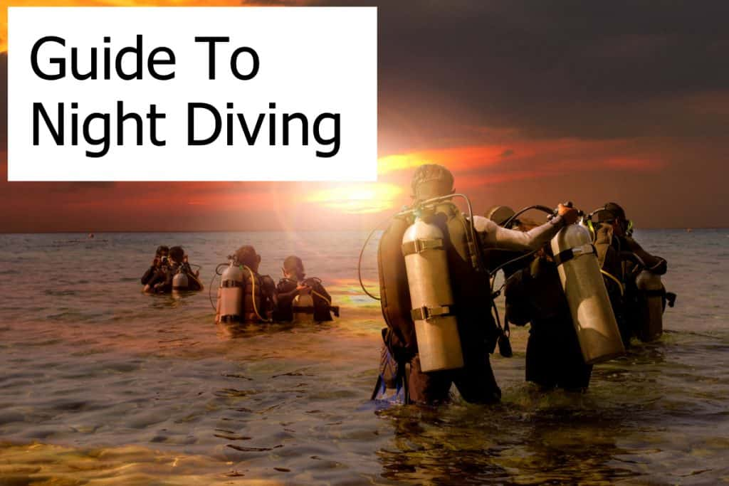 Night Diving - Mysterious and Fascinating. A complete in-depth guide on how to dive at night!