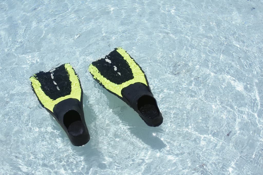 Best fins for snorkeling