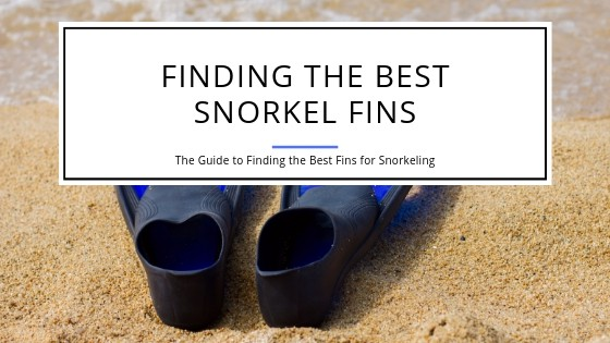 How to find the best snorkel fins