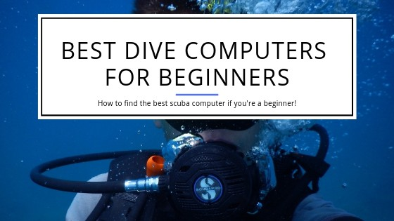 Best Dive Computer for beginning divers