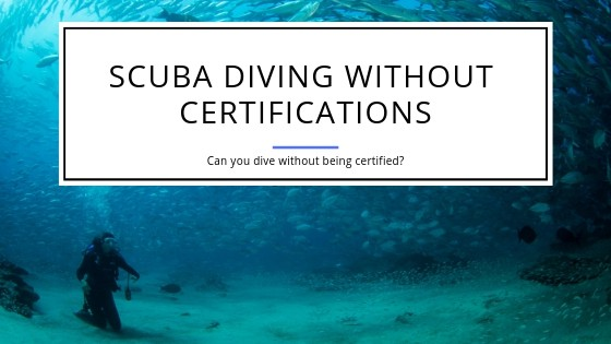 Scuba Diving Without Certifications