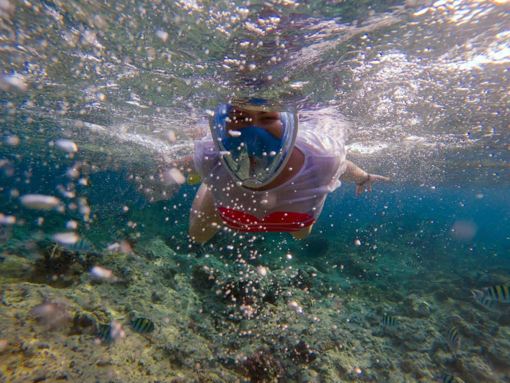 Snorkel Goggles Allowing to Breathe through Mouth and Nose