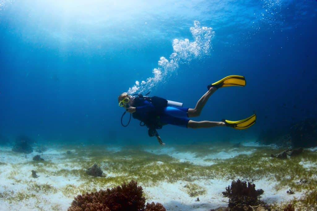 Finding the best flippers for scuba diving