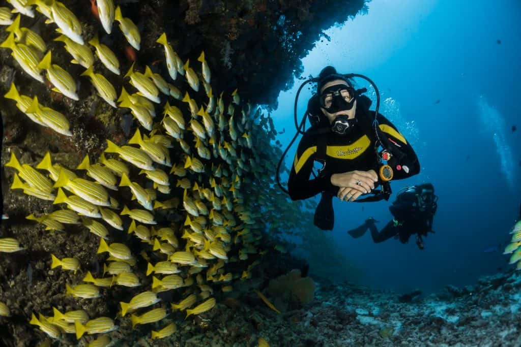 Is Scuba Certification Expensive