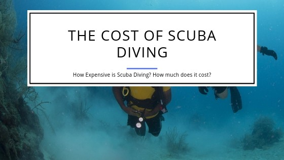 Cost of Scuba Diving