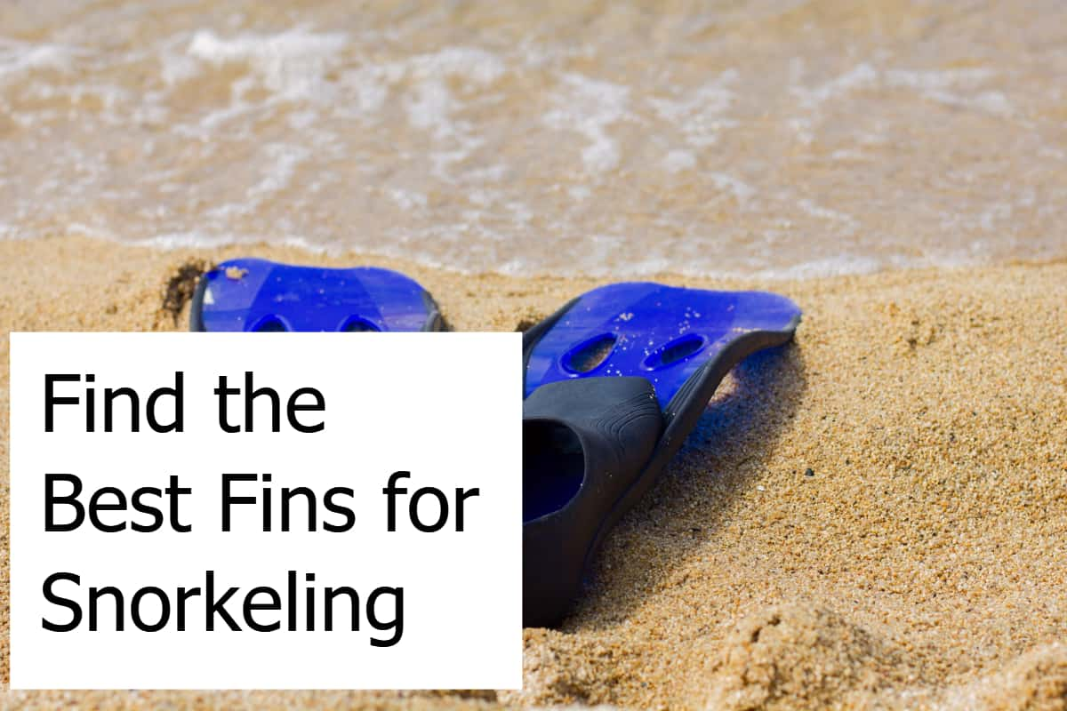 Find the Best Fins for Snorkeling