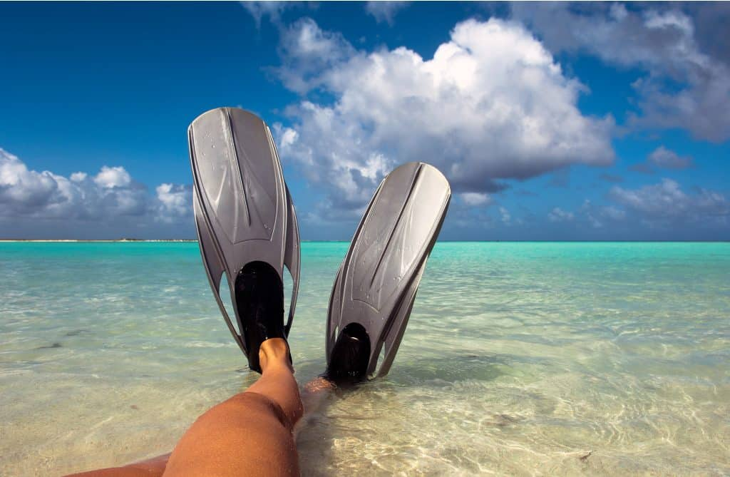 Travel fins for Scuba Diving