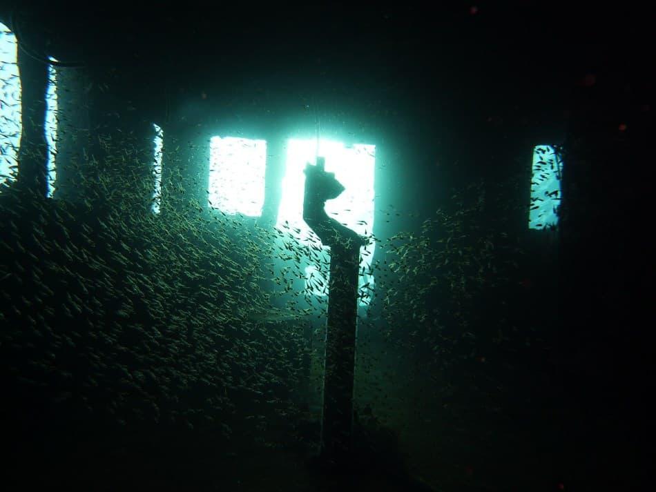 Best Scuba Dive Torch