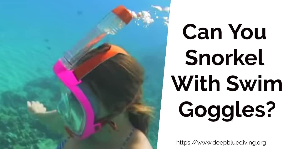 Can You Snorkel With Swim Goggles - How do you use snorkelling goggles?