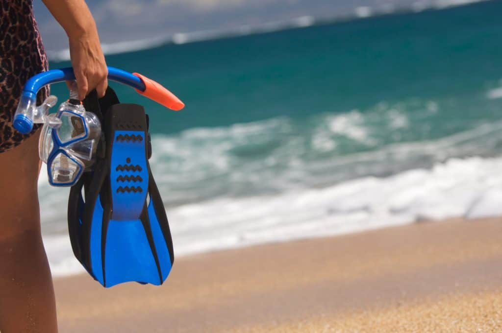 Full Foot snorkel fins or flippers with heels that are open and secured with a strap?