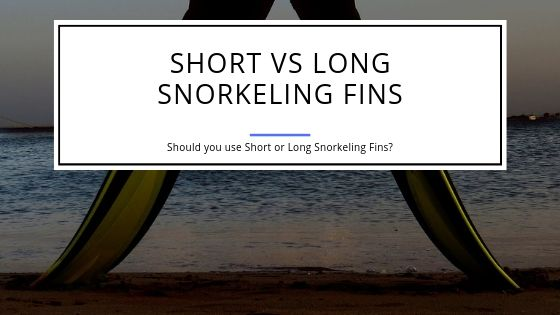 Short or Long Fins for Snorkeling