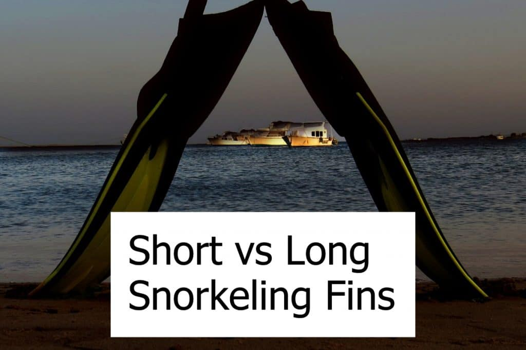 Which fins are better for snorkeling? Long or Short Blade Fins? Or even go with splits?