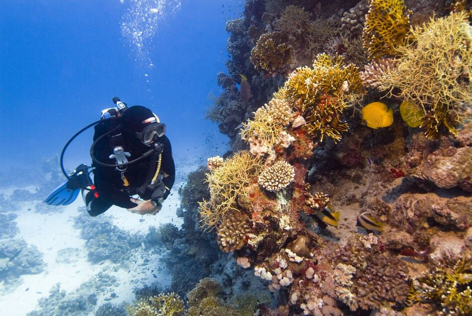 Diving Safely with a Pacemaker