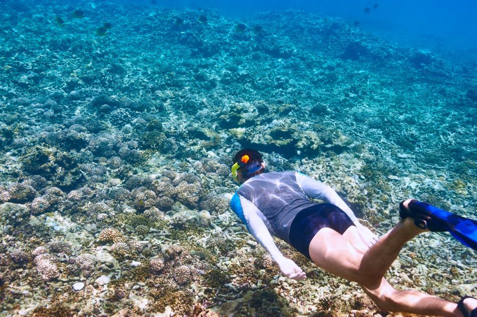 Drowning when snorkeling