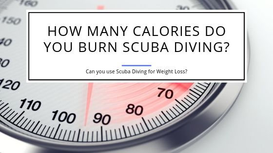 How Many Calories do you Burn Scuba Diving