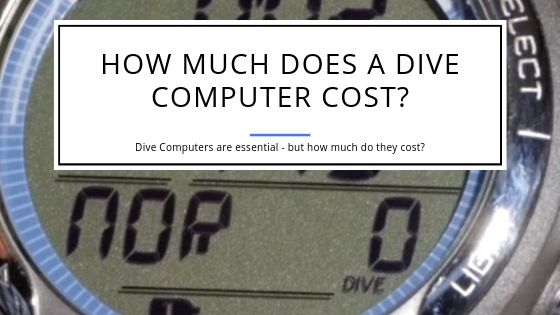 How Much Does a Dive Computer Cost
