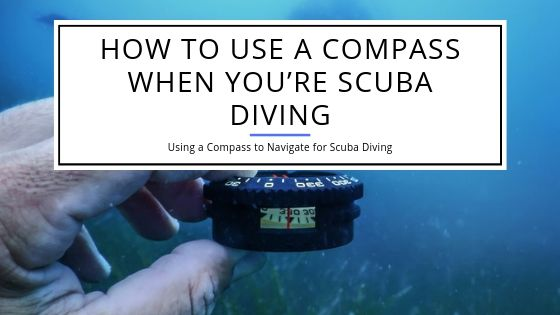 How to Use a Compass When You're Scuba Diving