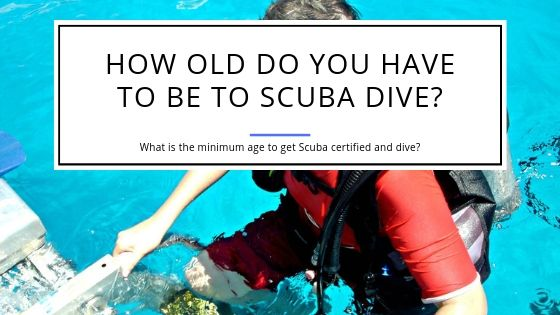 How Old Do You Have to Be to Scuba Dive
