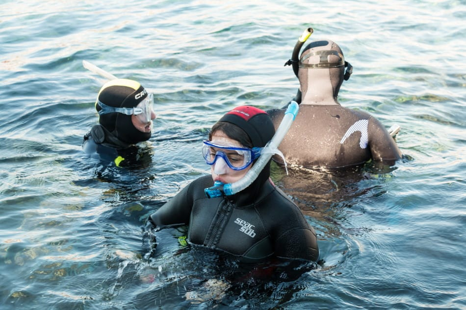 Need a snorkel when diving?