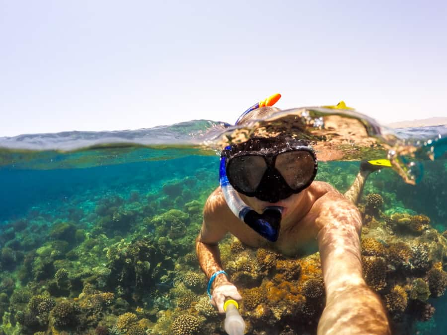 Beginner Guide on how to snorkel