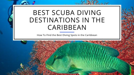 Best Scuba Diving Destinations in the Caribbean