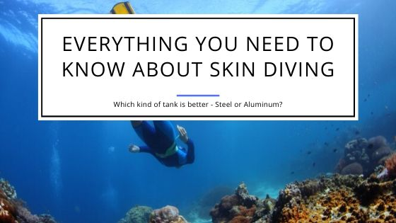 Everything you need to Know about Skin Diving