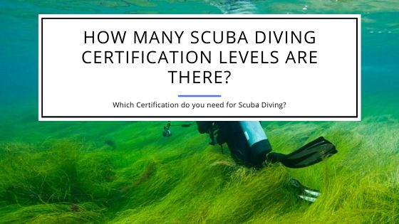 How Many Scuba Diving Certification Levels Are There