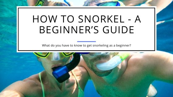 How to Snorkel - A Guide for Beginners
