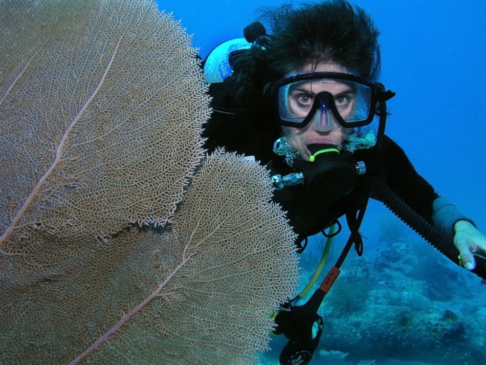Recovering and Clearing your Dive Regulator