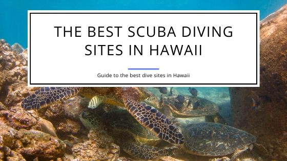 Best Scuba Diving Destinations in Hawaii