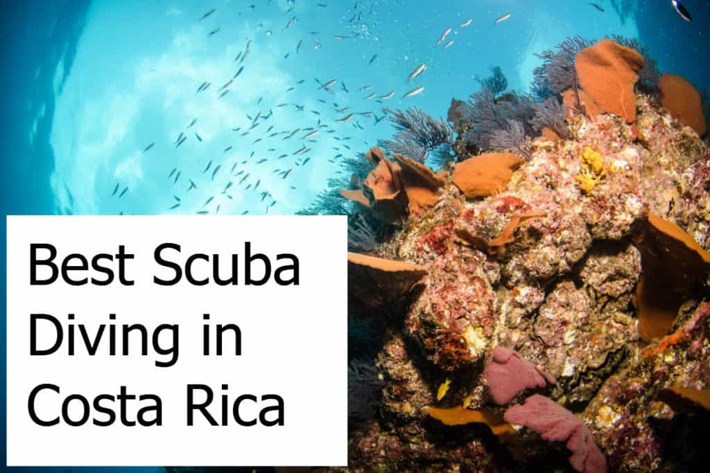 Best Scuba Diving in Costa Rica