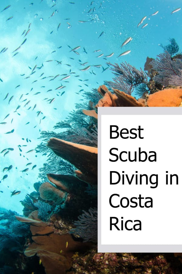 Best Scuba Diving in Costa Rica P